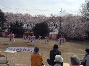 荒川公園会場はバックに満開の桜!素敵だわさ〜